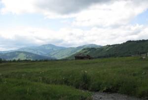 Пастбище, Горный Алтай